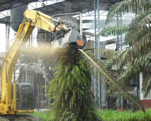Cabezal para Excavadora- Triturador Forestal