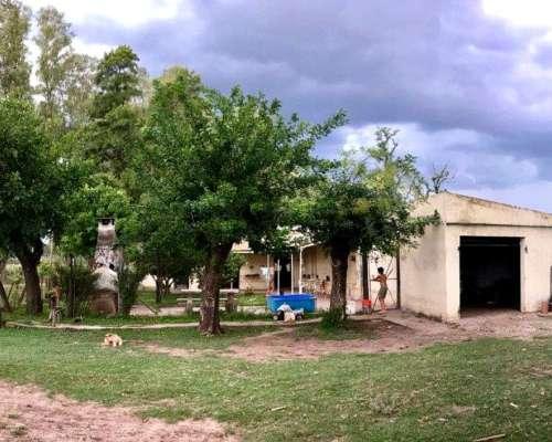 Campo en Venta 86 Has. Mercedes Buenos Aires