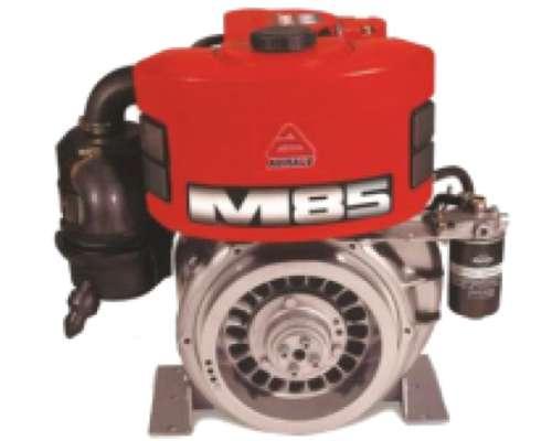 Motor Agrale 9 CV