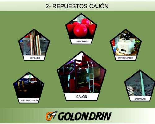 Repuestos para Clasificadoras Polea Cabezal Correa Biela