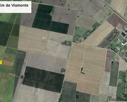 Campo 100% Agrícola a 3 km de Viamonte