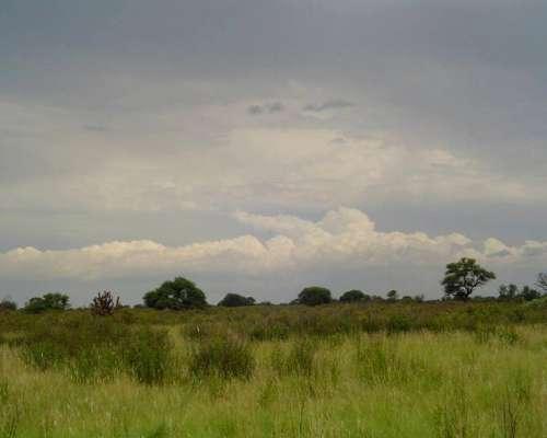 Campo al Noreste de la Provincia de Cordoba