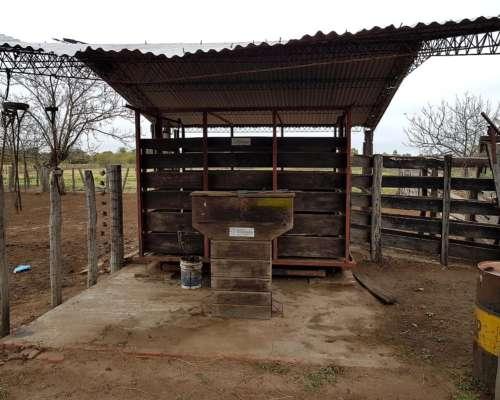 8.283 Hectáreas en Venta en Estanislao del Campo (formosa)