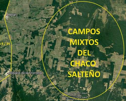 Campo Mixto en el Chaco Salteño. Liquido por Cambio de Rubro