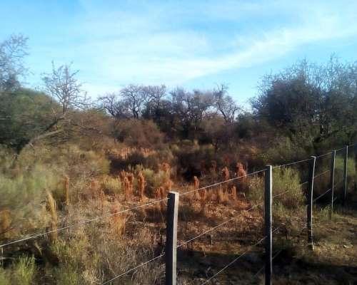 Hectáreas, Campos en Sierras de los Comechingones