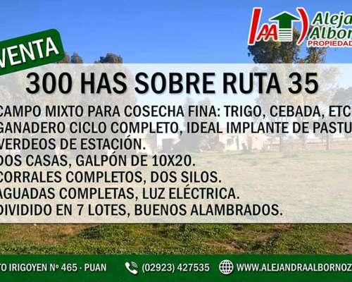 Alejandra Albornoz Vende Sobre Ruta Nacional 35