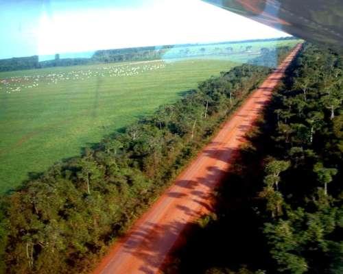 Vta 141.813 Has en SAO Felix DO Araguaia - Mato Grosso Norte