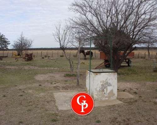 En Venta, 620 Has,pichi Huinca - la Pampa -