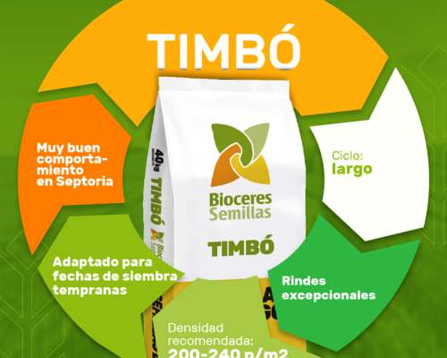 Semilla de Trigo Timbo - Bioceres
