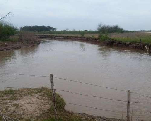 1.600 a 3.600 Has a Pastaje en Logroño Contra el Río