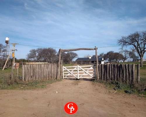 En Venta 1.800 Has en Rancul, la Pampa.-