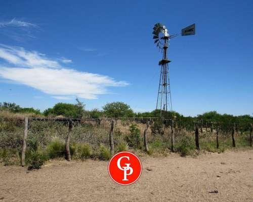 En Venta, 5.000 Has , Lihuel Calel, la Pampa.-