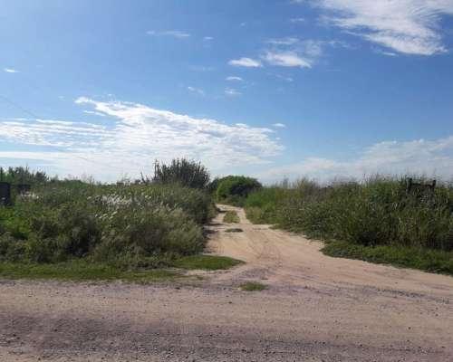 Fernández - 120 Ha - Santiago del Estero