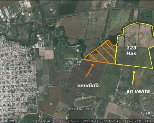 123 Hectareas Bell Ville Agrícolas