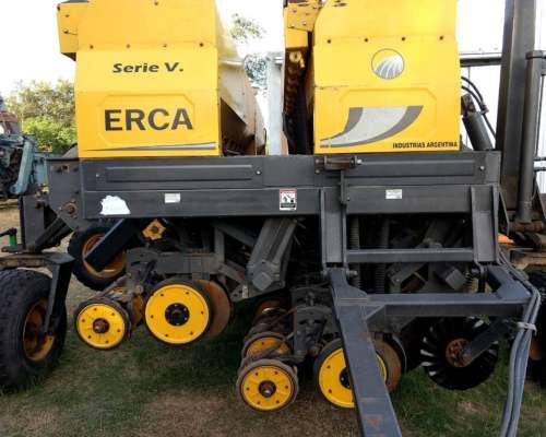 Semb. Erca 33/19 cm (19/38 CM) - Alfalfero - 2013 - Excelent