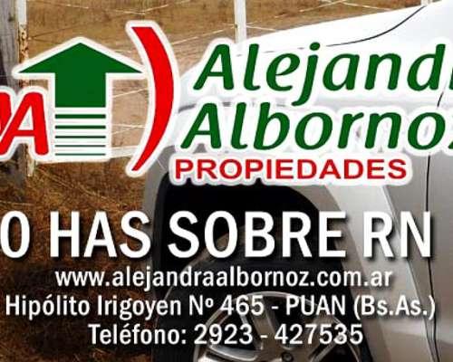 Alejandra Albornoz Vende en Nueva Galia San Luis