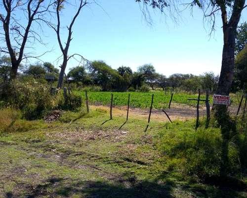 28 Hectáreas Agricola en Almacen Iglesias