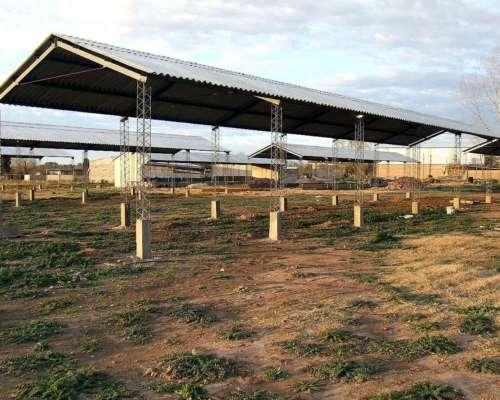 Galpones/ Tinglados / Estructuras Metalicas/chapas Recicl .