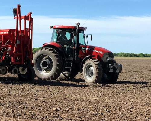Tractor Case IH Farmall 125