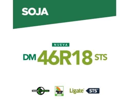 Dm 46r18 STS .