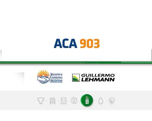 Alfalfa ACA 903 - Semilla Forrajera