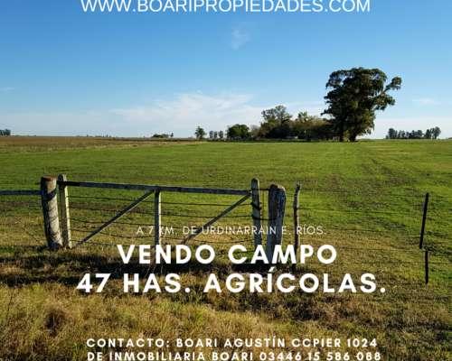 Vendo Campo 47 Has Agrícolas - Negociable