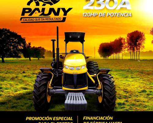 Tractor Pauny 230 a 3p Cummins 6 Cil, Vende Cignoli HN