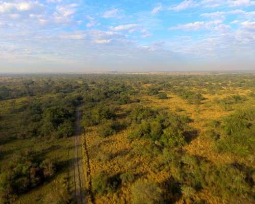 1.300 Has. Ganadera Agrícola Arrocera en Mercedes Corrientes