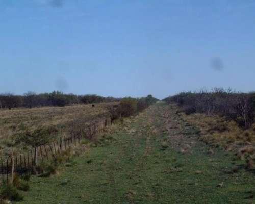 Sl0065 Venta Ganadero 18000 Has Gobernador Dupuy, San Luis