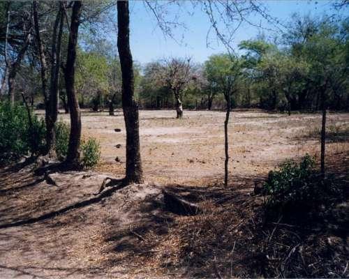 57 HA. Alto los Quebrachos (zona Cruz del Eje) Córdoba