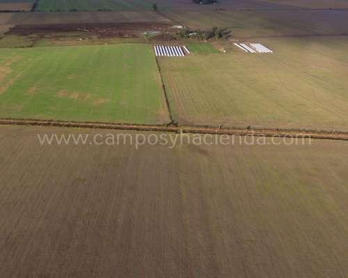 75 Has Agrícolas - Prov. de Córdoba