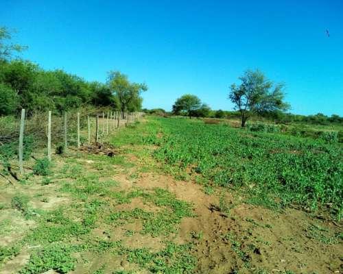 Campo Mixto Santiago del Estero