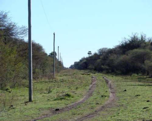 Campo en Venta 1700 Has Federal Entre Rios