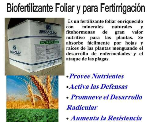 Fertilizante Nutrifol MAX Biofertilizante Foliar.pagas 30/06