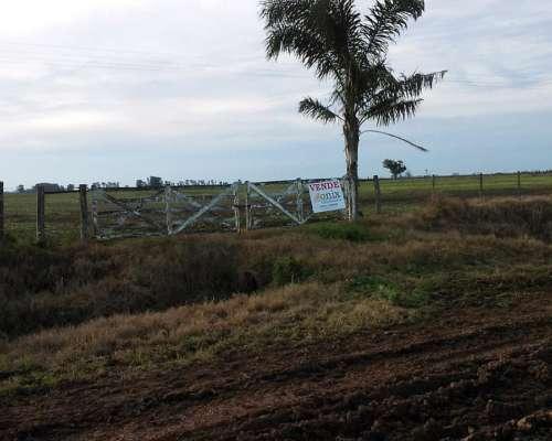 Canjeo Departamentos por Campo Agrícola en Santa FE