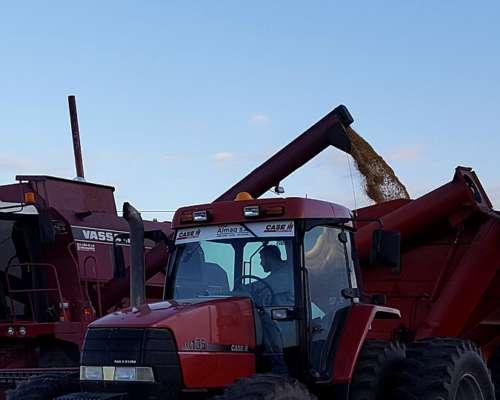 Tractor Case MXM 135