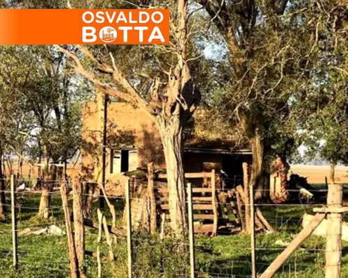 Oportunidad 60 Has. Suipacha Campo Mixto a Solo U$S 6000/ Ha