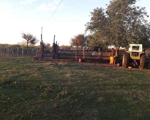 Dueño Vende Campo en San Luis