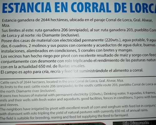Exelente Campo en General Alvear Corral de Lorca Mendoza