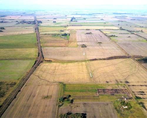 215 Hs Campo Agrícola en Santa Coloma