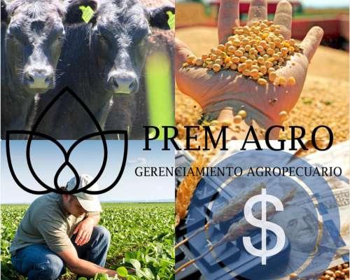 Gerenciamiento de Empresas Agropecuarias
