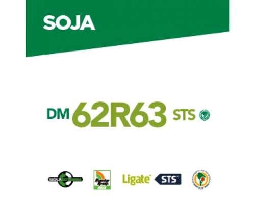 Dm 62r63 Sts Rsf