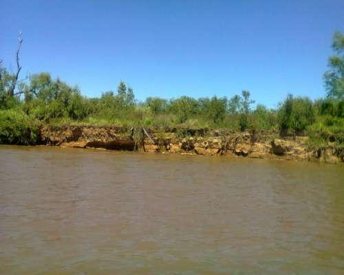 Vendo Isla Ganadera en Entre Rios, Sobre el Río Paraná.