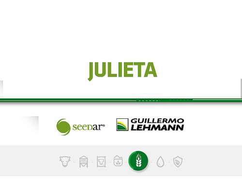 Avena Julieta - Semilla Forrajera Seedar