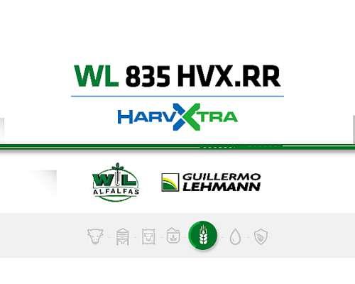 Alfalfa WL 835 HVX RR - Semilla Forrajera - Harvxtra