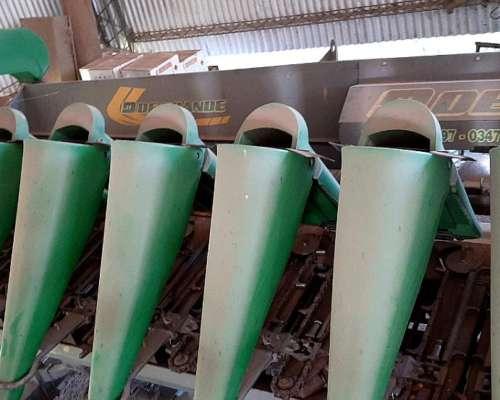 Maicero Degrande de 14 a 52cm