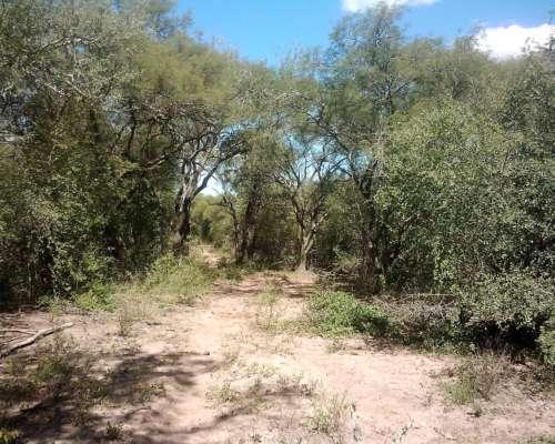 Campo en Rosario de la Frontera, Provincia de Salta