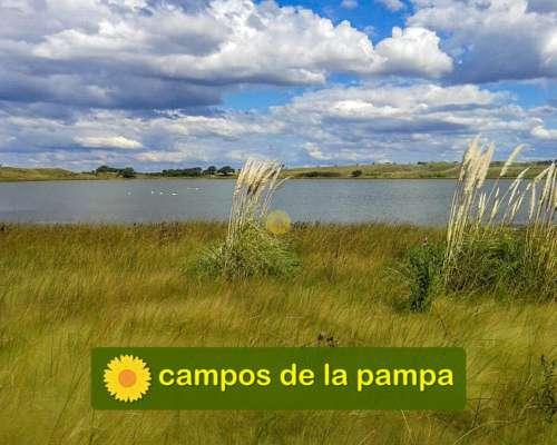 La Pampa - Venta 11.250 Ha Ganadería Cría - con Financiación