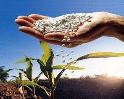 Yeso Agrícola Granulado y Polvo en BIG BAG o Granel y Bolsa