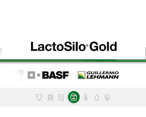 Lactosilo Gold Freeze-dried - Inoculante Basf